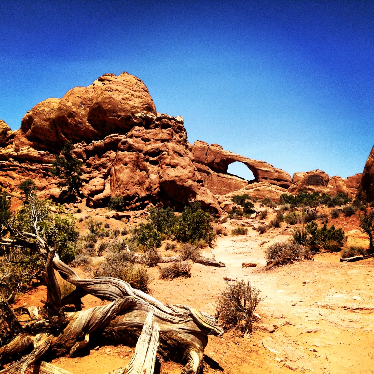 Where are all the arches in Arches National Park?
