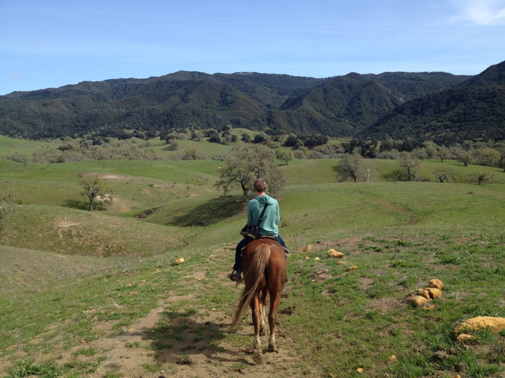 horseback riding, california santa ynez