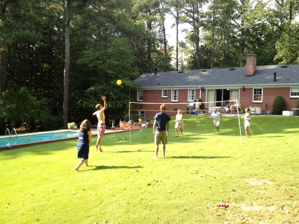 backyard volleyball photo