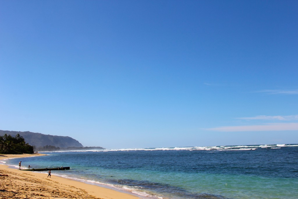 hawaiian beaches