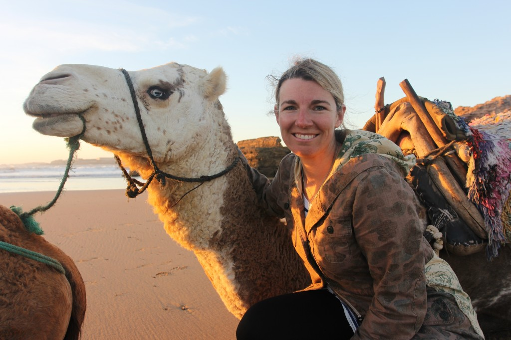 camels on the beach, Morocco