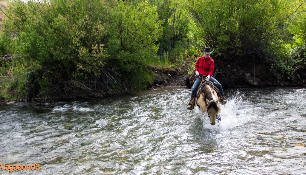 crossing trail creek on horseback - vagabond3