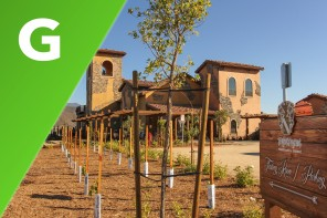 Temecula : Groupon Heaven
