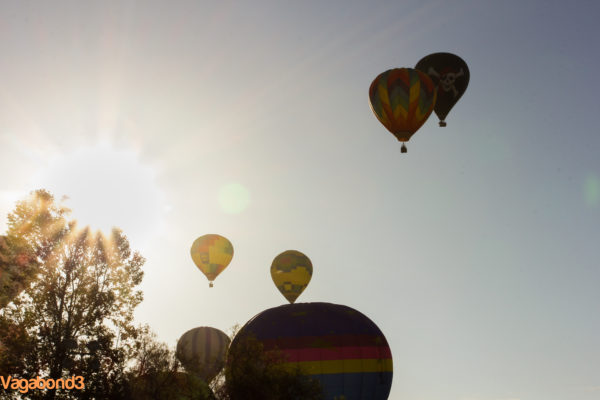 hot air balloons at sunrise - Vagabond3