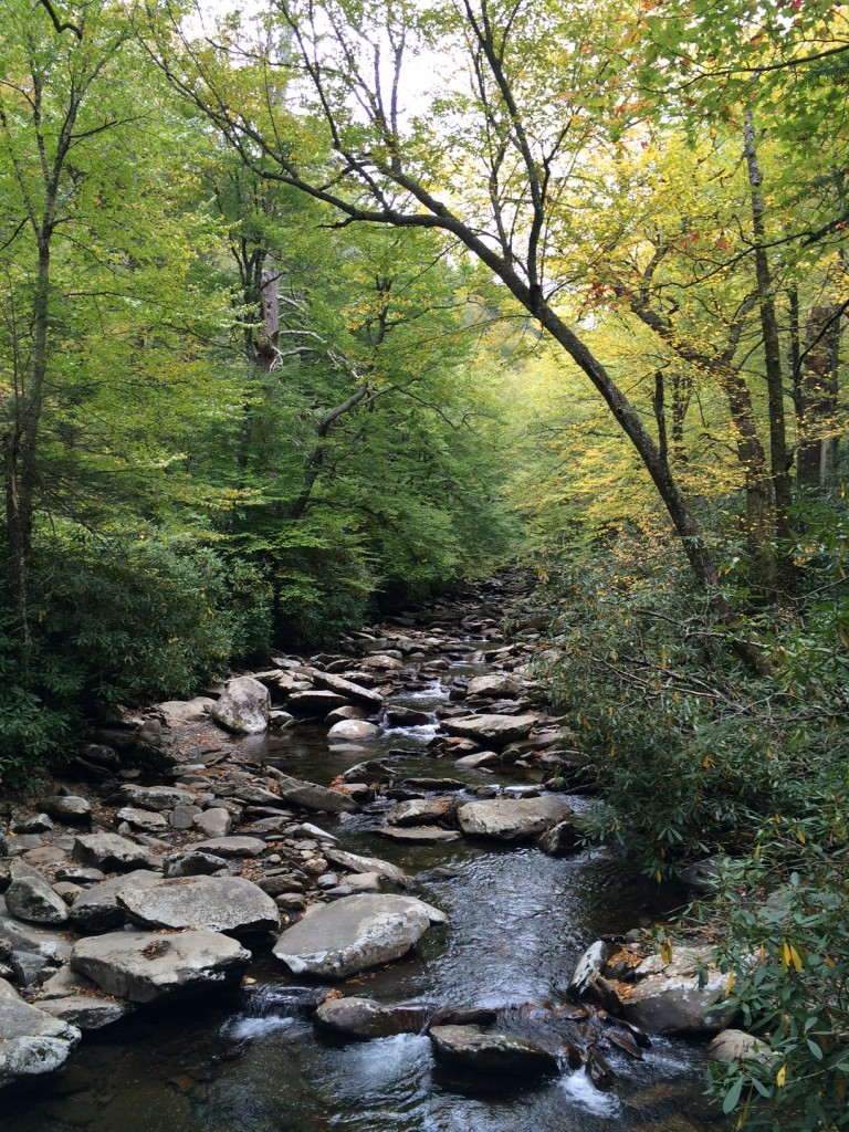 gatlinburg hiking