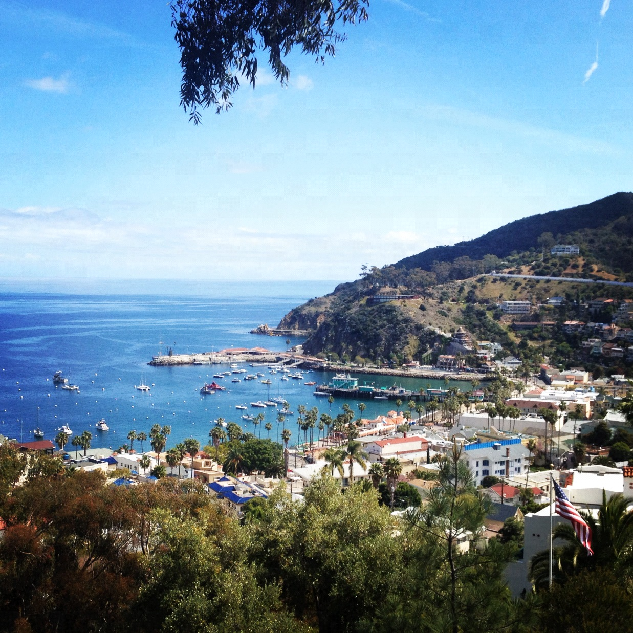 Catalina Island Day Trip From Long Beach