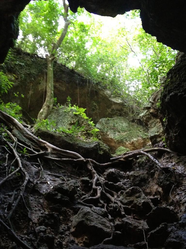 Puerto Rico Cave Adventures