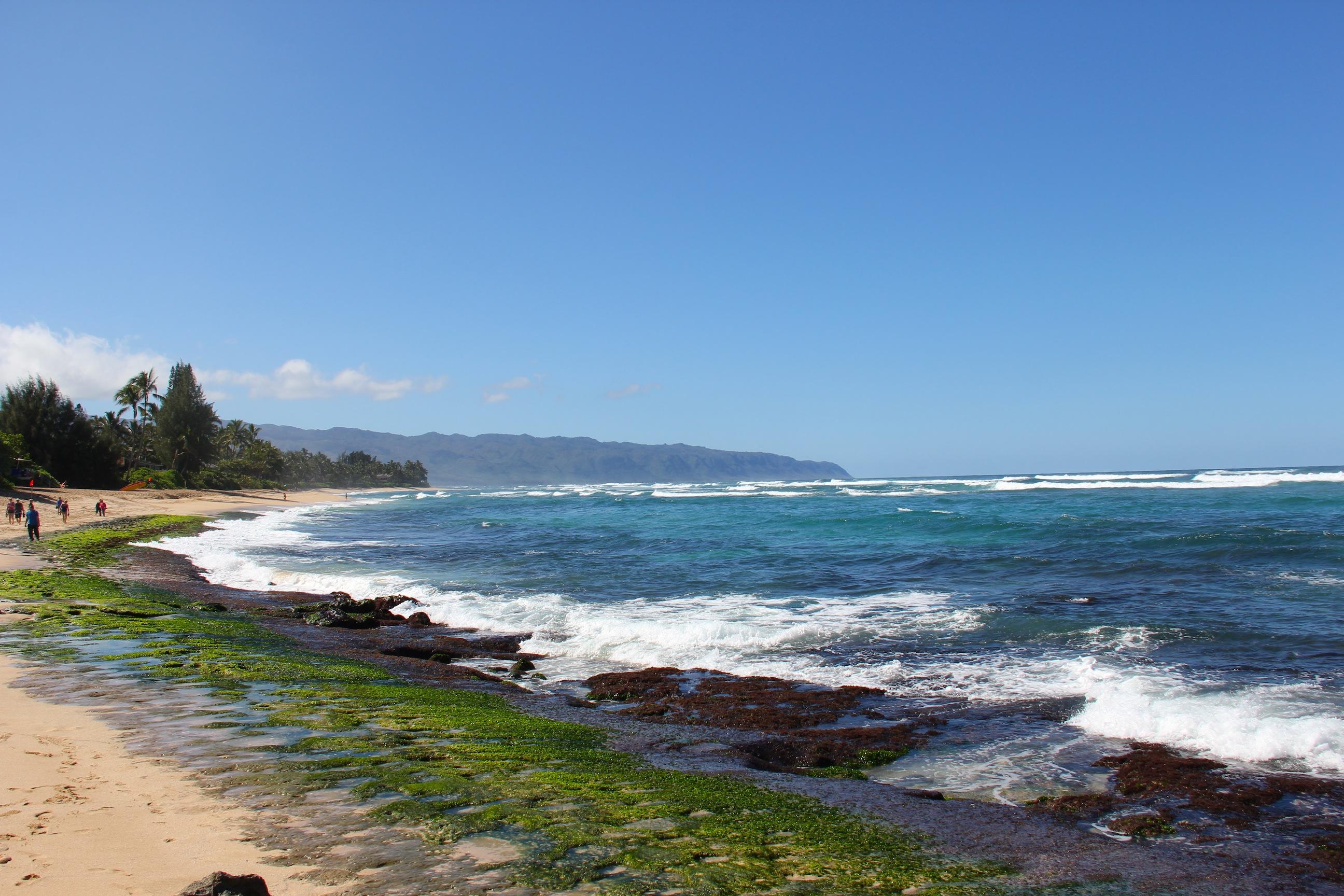 Secret Beach North Shore