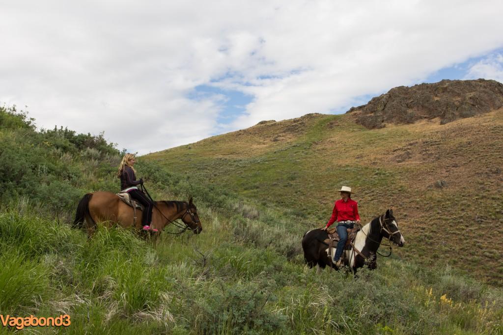 horseback riding - vagabond3