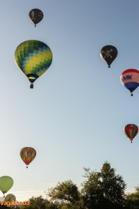 hot air balloons rising portrait - vagabond3