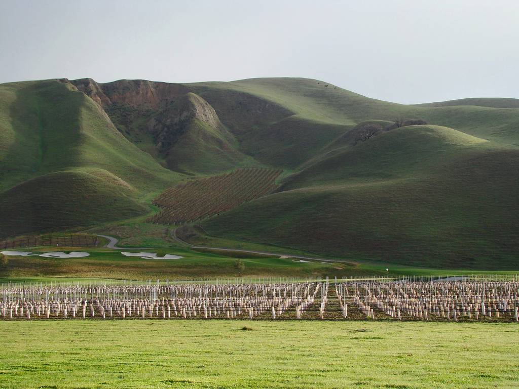 California Wine Country Day Trip via BART