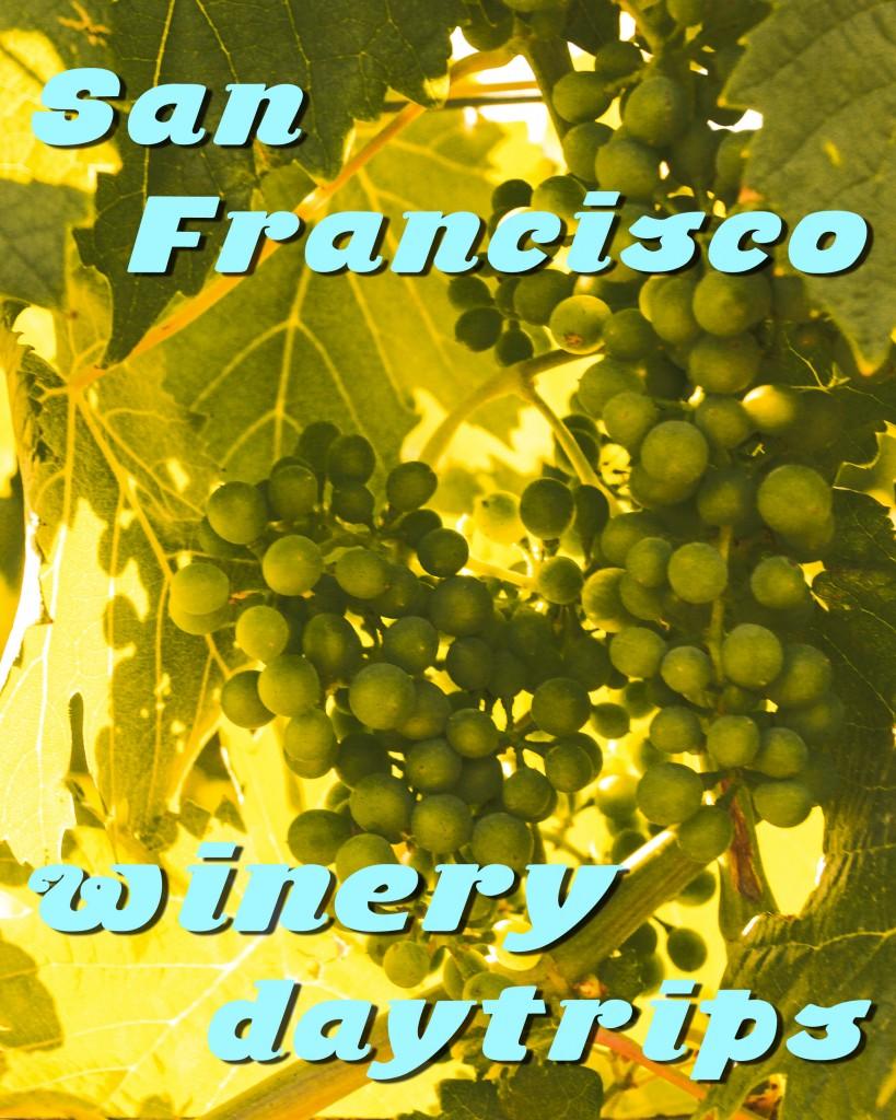 san fran winery daytrips