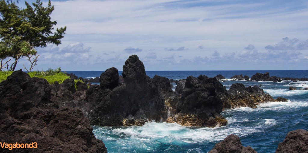 Laupahoehoe Shoreline
