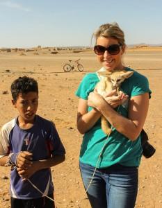 Fennec Fox on Leash being held morocco